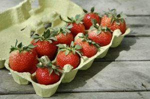 Lintorfer Erdbeeren